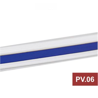 PV.06